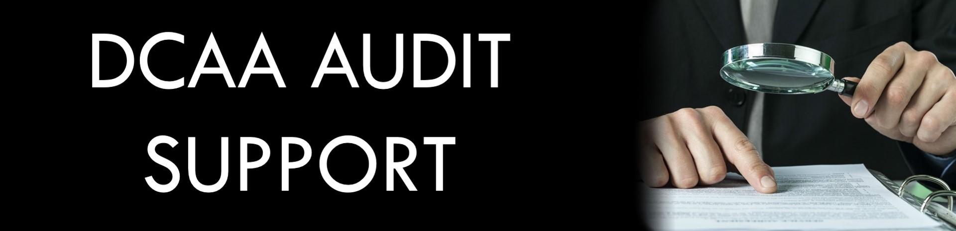 DCAA Audit